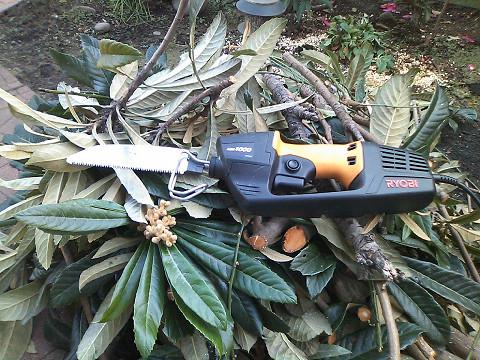 ASK-1000でびわと梅の枝落とし