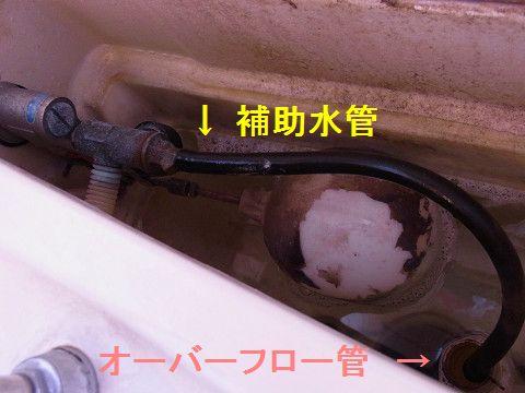 トイレ修理・補助水管 resize7_0497.jpg